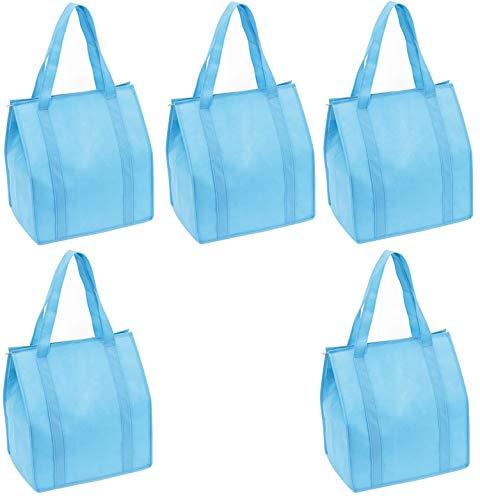 Preiswert & Gut - 5 x Borsa frigo Grande per la Spesa, 35 x 25 x 38 cm, Chiusura Lampo, in Tessuto, Colore: Azzurro