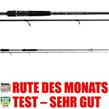 Angelrute Jackson The Mate - 2,40m 10-60g - Professionelle Spinnrute