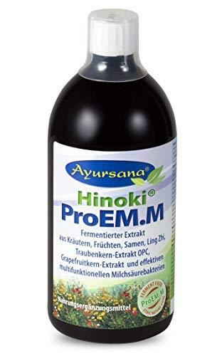 Ayursana - Hinoki ProEM.M Enzym-Konzentrat, mit Ling-Zhi und OPC (1000 ml) -
