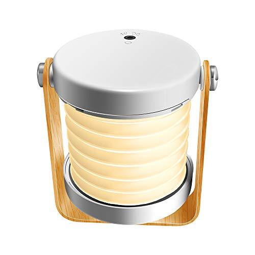 Delymc LED Leuchte Nachtlicht Handleuchte Touch Nachttischlampe 360°Dreh Wireless Wiederaufladbare Dimmbar Nachtlampe Lesen Licht Leuchte Camping Wandern Zelt PR05