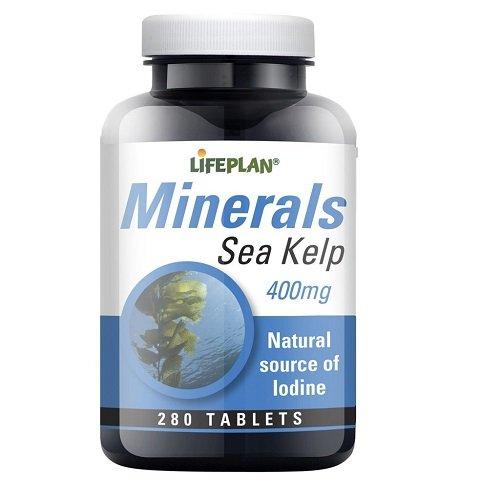 Lifeplan Sea Kelp 400mg 280 Tablets Test