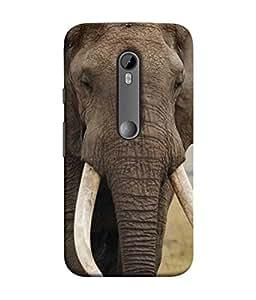 PrintVisa Designer Back Case Cover for Motorola Moto G3 :: Motorola Moto G (3rd Gen) :: Motorola Moto G3 Dual SIM (POWERFUL bold classy pieceful elephant long tooth)