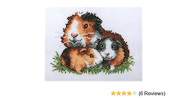 Guinea Pigs Cross Stitch Kit Amazon Co Uk Kitchen Home