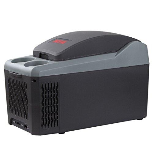 Peaceip 10L Auto Kühlschrank Auto Heizbox Kühlbox Kleiner Kühlschrank Mini Kühlschrank Kühlschrank