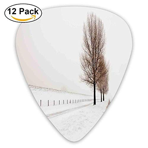Row Of Large And Bare Beech Trees In Snow Covered Winter Frozen Photo Guitar Picks 12/Pack