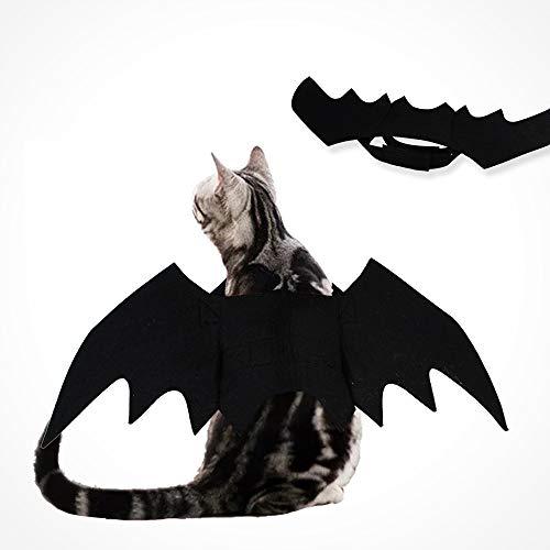 Katze Kostüm Kleine - Decdeal Halloween Katzenkostüm Fledermaus Kostüm für Katzen und Kleine Hunde aus Felz Doglemi