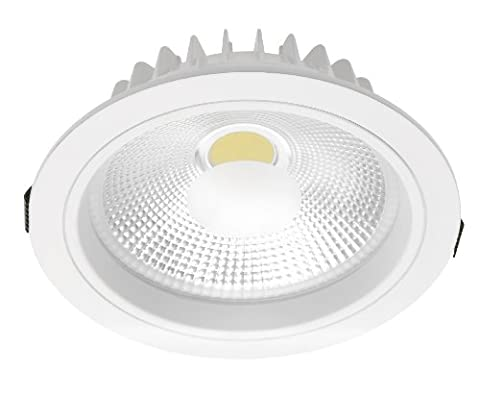 LED COB Spot Down Light Downlight Fitting 20 Watt Aluminium with Transformer Round Cold White Reflector with White Metal Frame with Glare