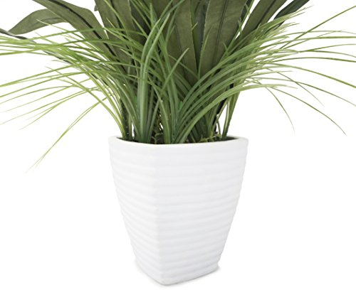 Closer2Nature-Artificial-2ft-7-White-African-Lily-Plant-in-a-Decorative-White-Ceramic-Pot