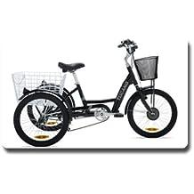 TRIKE - El Triciclo Eléctrico - Motor 36V 250W 8FUN - Frenos Delanteros V-Brake - Totalmente equipada (NEGRO)