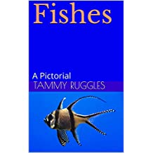 Fishes : A Pictorial (English Edition)