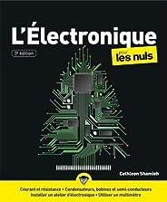 L'électronique pour les Nuls, grand format, 3