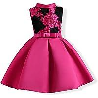 FXFAN Vestidos de Las Muchachas Mariposa Bordado Vestidos Formales del Banquete de Boda Vestidos de la Princesa (Rojo, Rosa, Azul) ZHANGM (Color : Rosado, Tamaño : 150)