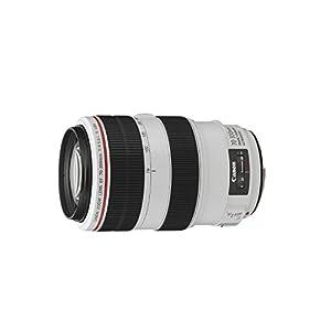 Canon Telezoomobjektiv EF 70-300mm F4-5.6L IS USM für EOS (67mm Filtergewinde, Autofokus, Bildstabilisator), hellgrau/schwarz