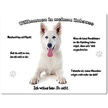 """Blechschild / Warnschild / Türschild - Aluminium - 20x30cm - - """"Willkommen in meinem Zuhause"""" - Motiv: Weißer Schäferhund liegend -- 12"""