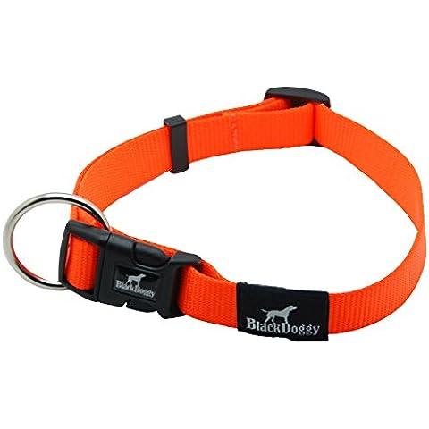 BlackDoggy in Nylon Fluo Animali domestici Collare Guinzaglio Corrispondenza di Sicurezza per Cane Regolabile Collari 2cm Larghezza Arancione