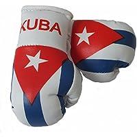 Mini Guantes de boxeo Kuba/Cuba, 1par (2pieza) Mini guantes de boxeo por ejemplo para Auto de espejo interior