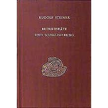 Betriebsräte und Sozialisierung.  Diskussionsabende mit den Arbeiterausschüssen der grossen Betriebe Stuttgarts, 1919