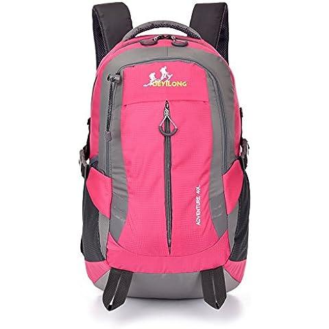 Un sport all'aria aperta giorno nuova borsa a tracolla femminile viaggio zaino borsa capacit¨¤ nuovo svago coreano maschio computer zaino 40L , rose red