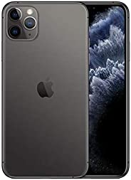 Apple iPhone 11 Pro Max with FaceTime - 512GB, 4GB RAM, 4G LTE, Space Gray, Single SIM & E