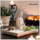 Jardín Zen Decorativo con Buda Homania