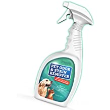 Orina de Mascotas limpiador de alfombras–mejor mascota orina enzima limpiador–Pet mancha limpiador de moqueta con aroma de lino para perro y gato orina
