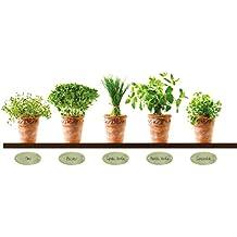 Great Eurographics Deco Sticker / Wandtattoo DS AU1018 Herb Pots II 25 X 35 Cm