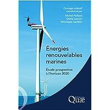 Energies renouvelables marines: Etude prospective à l'horizon 2030
