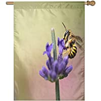 Kotdeqay Polyester Garden Flag House Banner 28 x 40 Inch, Peony Flower and Rainbow Decorative Flag for Christmas Anniversary Home Outdoor Garden Decor F2