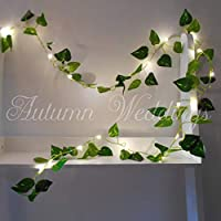 Ivy Fairy Lights String Lights 2m 20 LED - Wedding Decorations - AA Battery Powered - Warm White - Indoor Leaves - Ivy Garland with Lights - Fairy Lights Bedroom Leaf Fairy Lights Fairy Lights Leaf