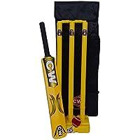 C&W Master Blaster - Juego Completo de críquet de plástico para niños de 5 a 6 años