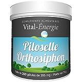 Vital-Energie Piloselle/Orthosiphon 200 gélules