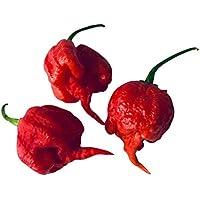 En realidad -Carolina Reaper Hot Pepper -> 30 semillas por Samenchilishop -Alemán vendedor-