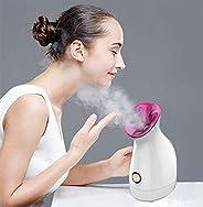 Personal Beauty Face Car Pro Household Nano Care Ionic Mini Facial Steamer Facial Spa