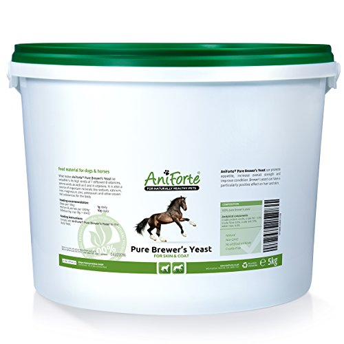 AniForte Pure Brewers Yeast 5000 g for skin and coat- natural product for horses