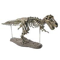 YYD Dinosaurs Tyrannosaurus Rex Skeleton Trex Animal Model Kids Toys Gift Large dinosaur skeleton model
