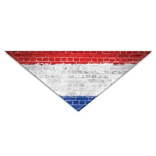 Streifen Niederlande Flagge Backsteinmauer Hund Bandanas Schals Dreieck Lätzchen Schals Einzigartige grundlegende Halstuch Katze Kragen - Kinder Kostüm Valentine