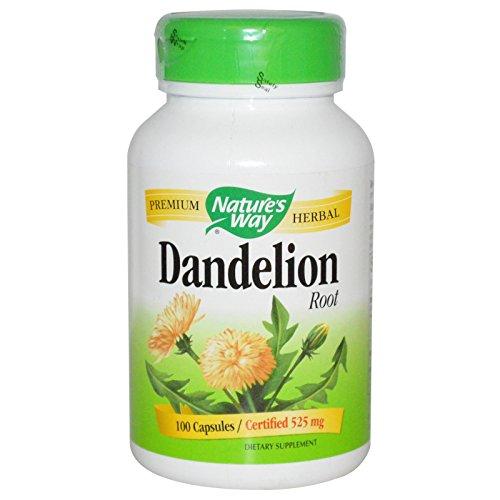 Preisvergleich Produktbild Nature's Way, Dandelion Root, 525 mg, 180 Capsules