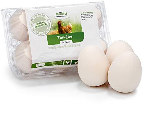 AniForte Bruteier für Hühner 6 Stück - Naturgetreue Nesteier aus Ton, Legeeier zur Bruthilfe für Hühner, künstliche Hühnereier, Fake Hühnerei, Huhn Ei Attrappe, Eier für Nestplatzbestimmung -