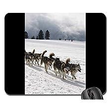 Yanteng Gaming Mouse Pads, Alfombrilla de ratón, Huskies Sport Snow Race Pet Rudel Nature
