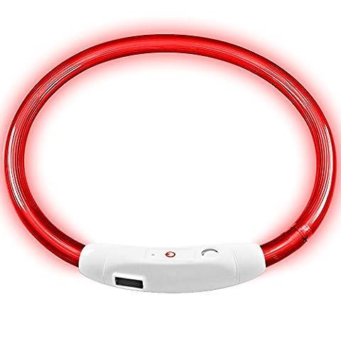 LED Haustier Hundehalsband, MAXIN Led USB wiederaufladbare Haustier Sicherheit Halsband Wasserdicht leuchten Länge 50cm (19.5in) Einstellbare blinkende Kragen (rot)