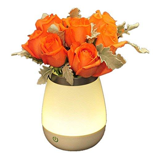 Dimmbare LED Vase Tischlampe Touch Control 3 Ebenen Nachtlicht Stift Topflappen Fisch Glas für Baby Zimmer Schlafzimmer Wohnzimmer und Büro Dekorationen