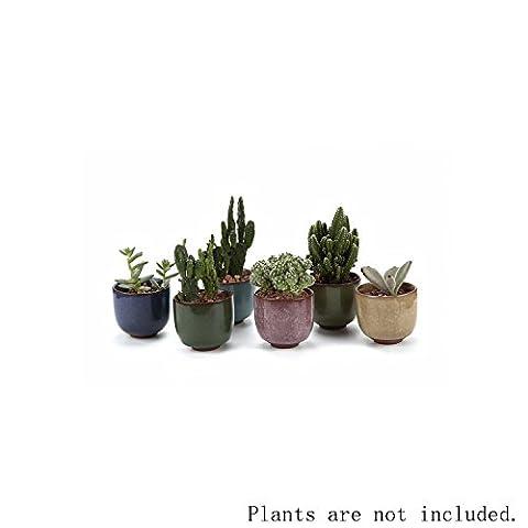 T4U Craquelure de glace Zisha Élevé Série Céramique Pot Plante Récipient Pépinière Pots Succulents Cactus Plante pots 6 Pièces - Hanging Flower Vase