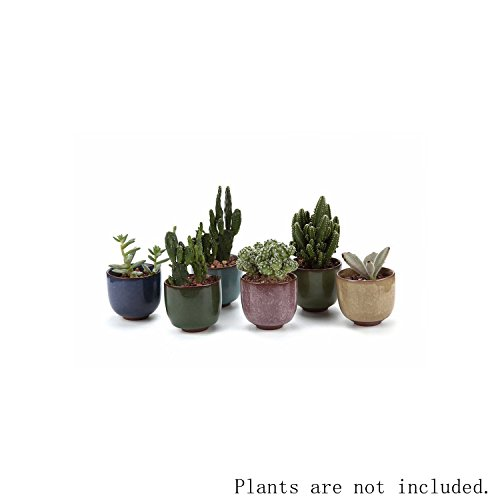 t4u-65cm-ceramic-ice-crack-zisha-raised-serial-sucuulent-plant-pot-cactus-plant-pot-flower-pot-conta