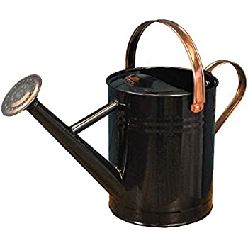 3.5L Shabby Chic Handmade Painted Iron Watering Can with Wide Spout /& 2 Handles