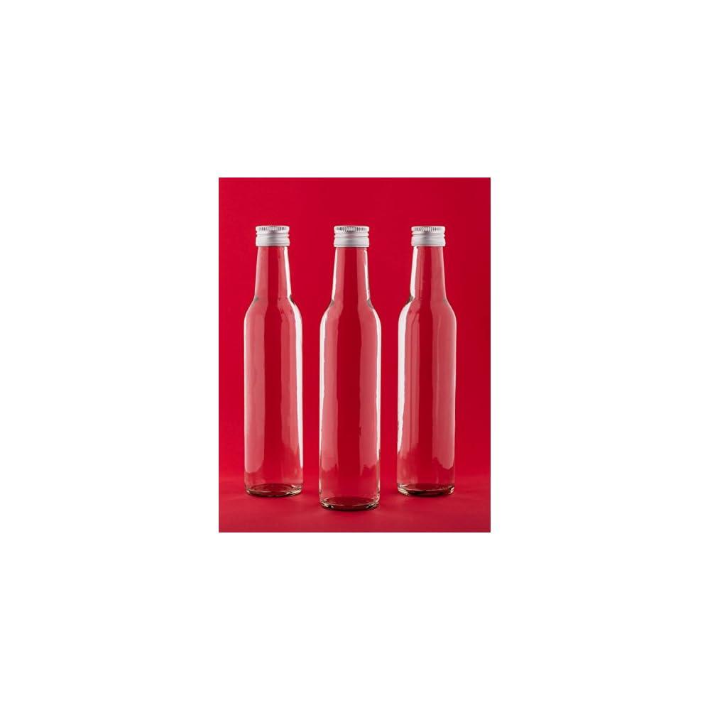 20 Leere Glasflaschen 250 Ml Bor Saftflaschen Mit Schraubverschluss Zum Selbst Abfllen 025 Liter L Likrflaschen Schnapsflaschen Essigflaschen Lflaschen Von Slkfactory
