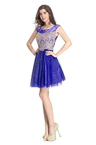 Fanciest Damen Embroidery Kurz Heimkehr Kleider 2016 Abendkleider Gowns Royal Blue