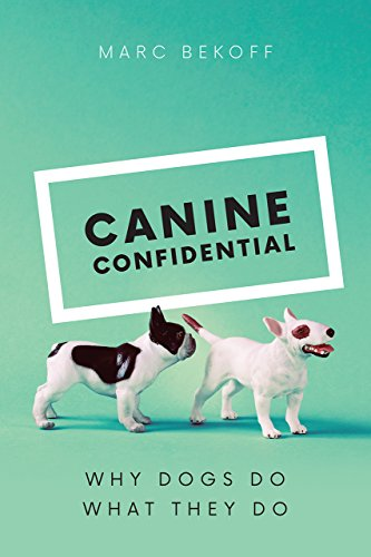 Canine Confidential – Why Dogs Do What They Do