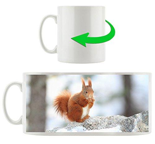 Écureuil dans la neige, Motif tasse en blanc 300ml céramique, Grande idée de cadeau pour toute occasion. Votre nouvelle tasse préférée pour le café, le thé et des boissons chaudes.
