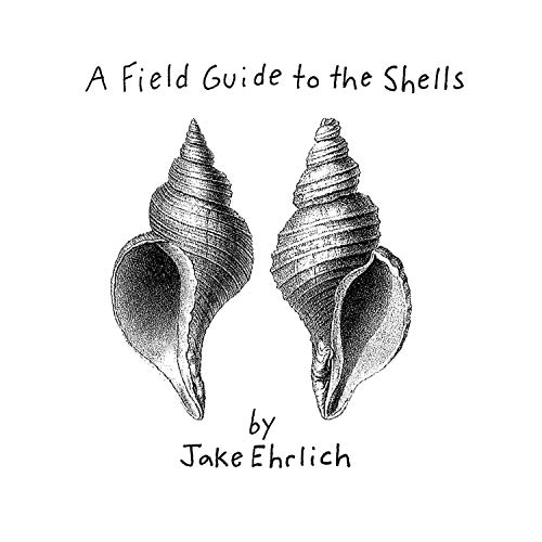 A Field Guide to the Shells
