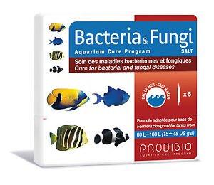 Bakterien & Pilze Salt 6Leuchtmittel Pflege der bakteriellen Krankheiten und Pilzerkrankungen vor Verseuchung kann Fische von Seewasseraquarien